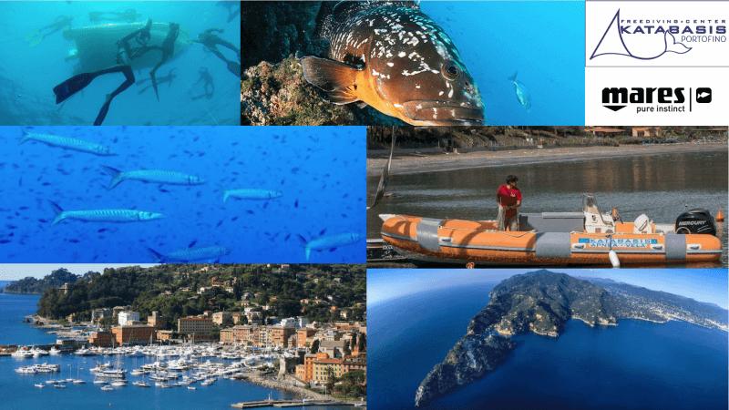 Katabasis cambia: dall'Elba a Portofino