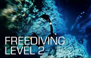 Corso Apnea SSI Freediving level 2