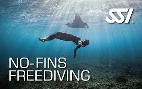 Specialità No Fins SSI Freediving