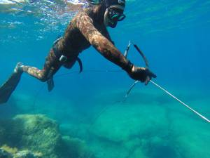 pesca in apnea katabasis freediving